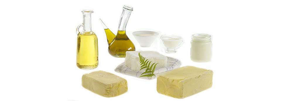 Plat diététique matières graisses
