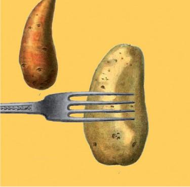 Menús para adelgazar calorías